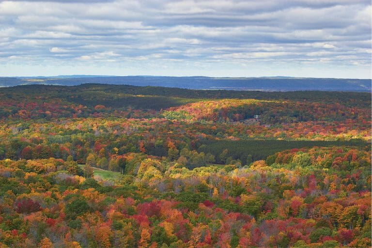 5 walking trails that won't disappoint fall color seekers