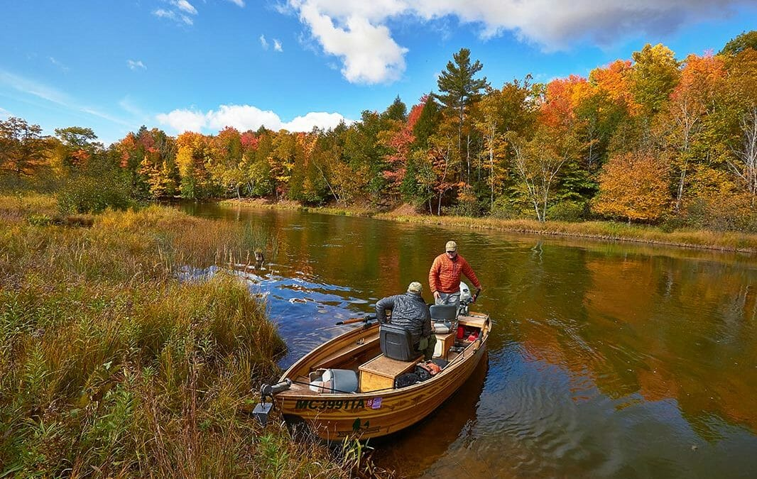The Science of Fall Color