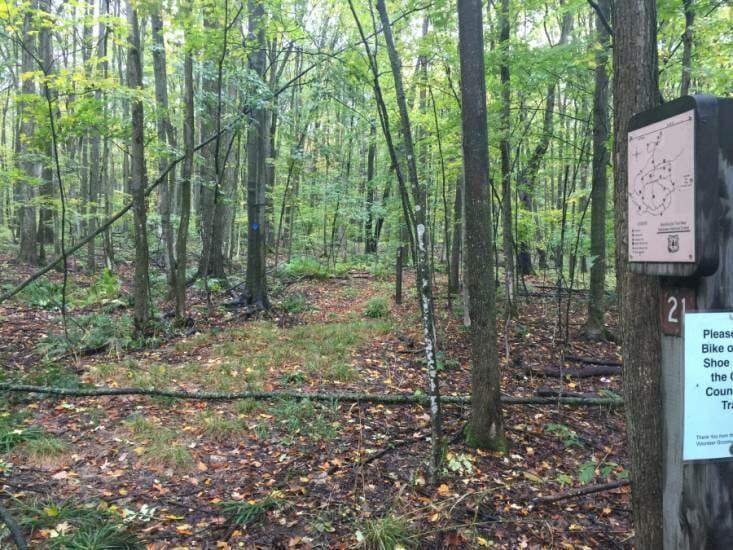 Mackenzie Trail