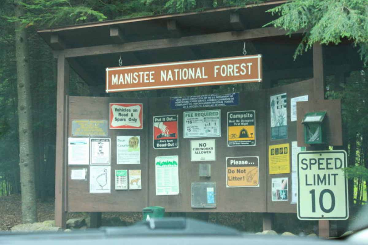 Hemlock National Forest Campground
