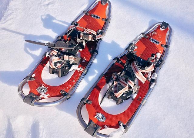 Pab Snowshoe 1983133 640