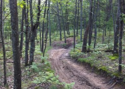 North Missaukee ORV Trail