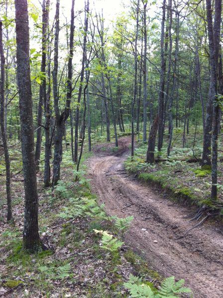 North Missaukee ORV Trail