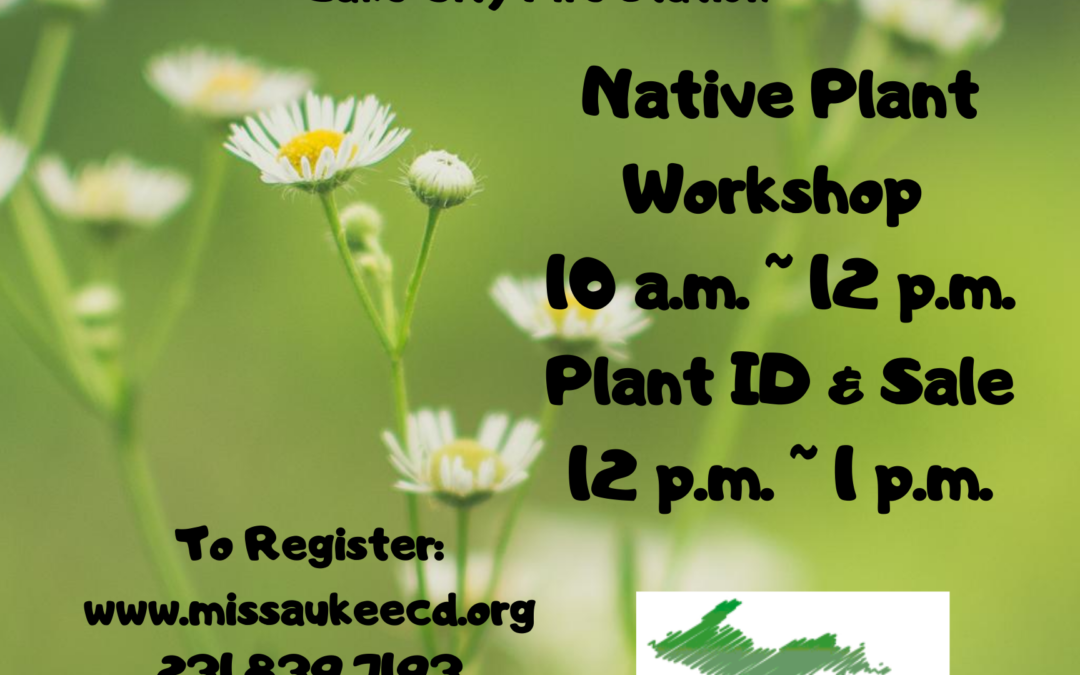 Nature Naturally: Creating a native garden in your own backyard & Plant Sale