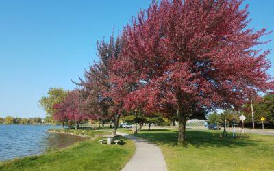 #ExploreCadillac Bucket List Item – The Walk Around Lake Cadillac