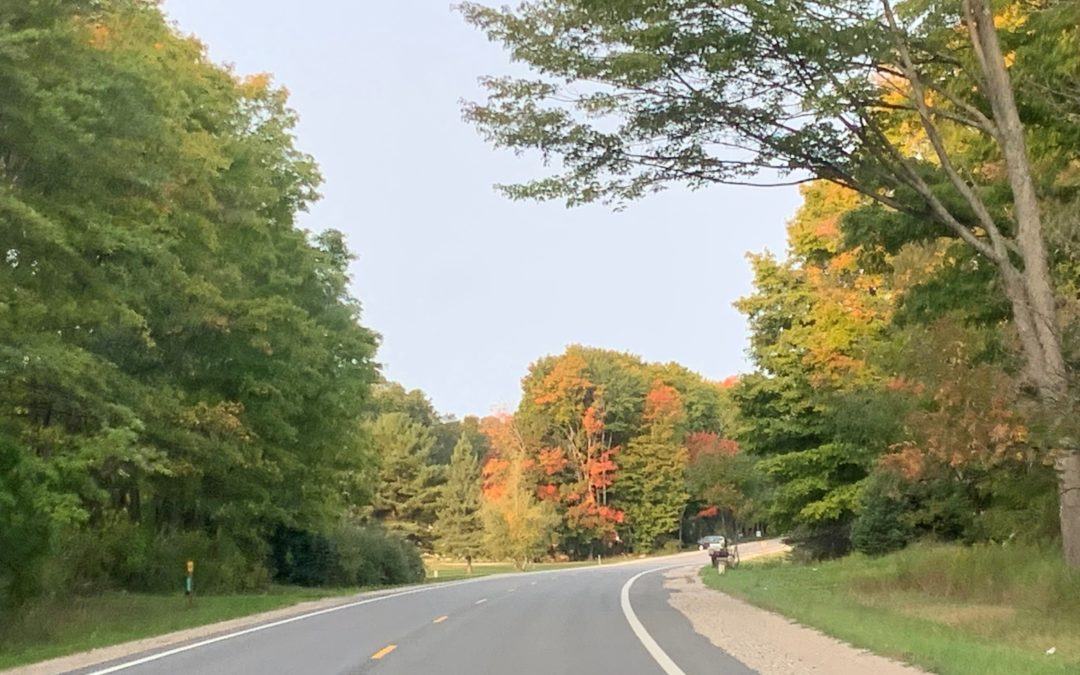 Fall Color Update – September 23, 2020