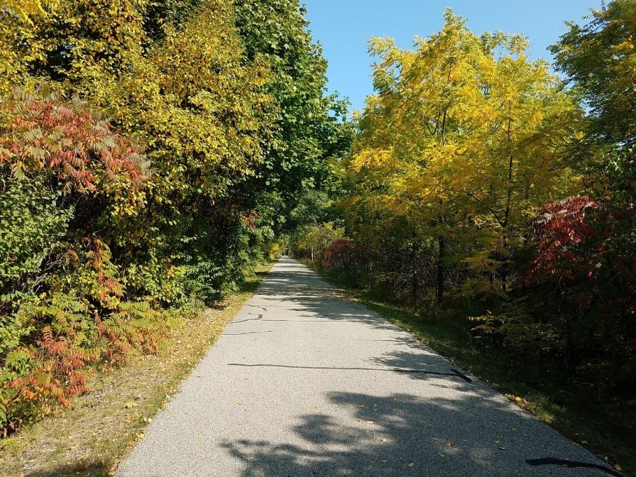 Cadillac Pathway in fall