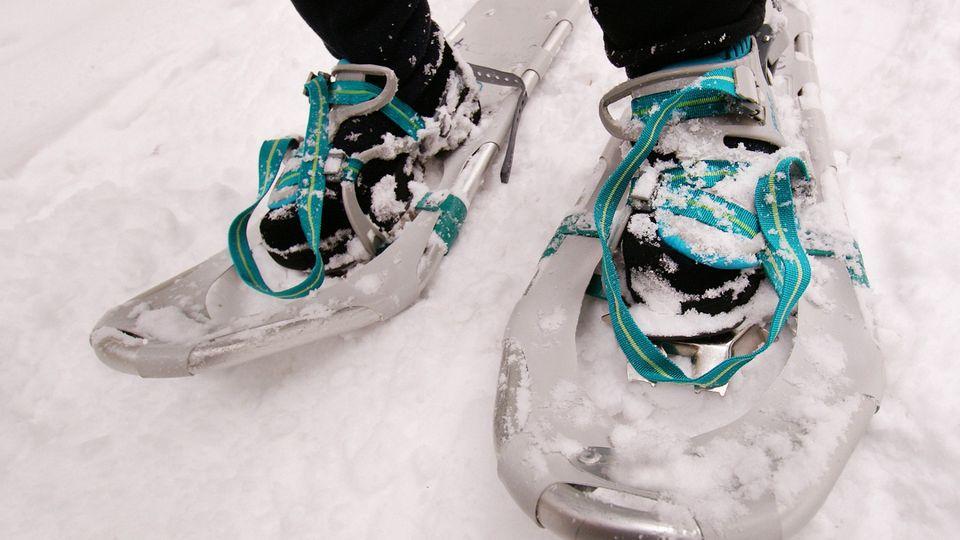 Ladies Snowshoe Adventure